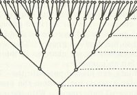 python xml - tree