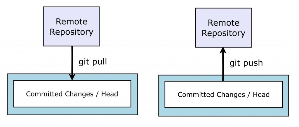 basic git - pull and push